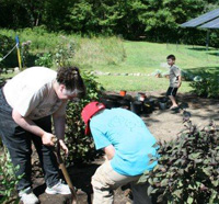 Homeschoolers helping in the garden at Oak Knoll Wildlife Sanctuary