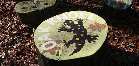 Oak Knoll painted on a tree stump