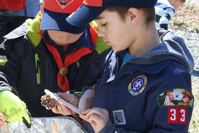 Scouts making a bird feeder