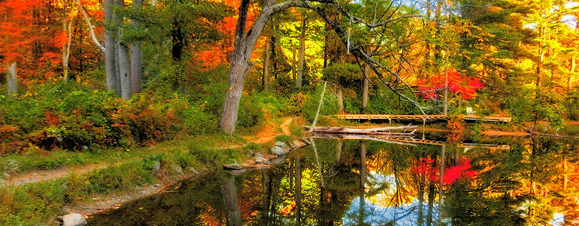 Fall foliage at Pleasant Valley Wildlife Sanctuary © Brooks Payne