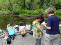 School children ponding at Pleasant Valley Wildlife Sanctuary