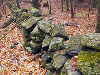 Stone wall at Richardson Brook Wildlife Sanctuary