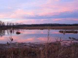 Sunset at Rough Meadows Wildlife Sanctuary
