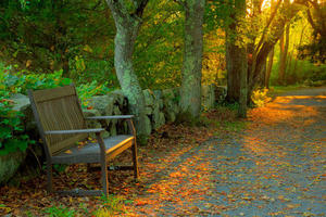 Bench at Stony Brook © Art Donahue