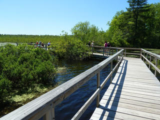 Boardwalk at Stony Brook