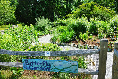 Butterfly Garden at Stony Brook © Garden Club of Norfolk