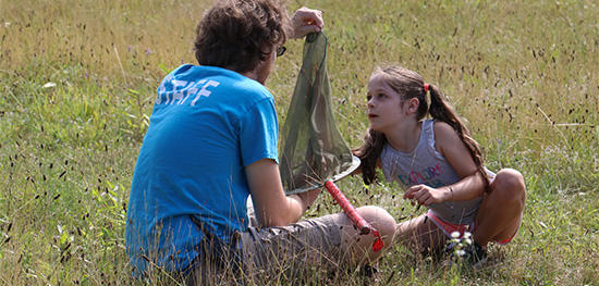 Counselor showing insect net to camper