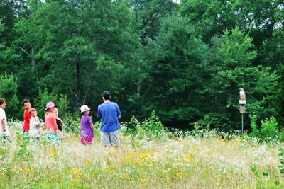 Stony Brook campers in a meadow watching a Red-tailed Hawk