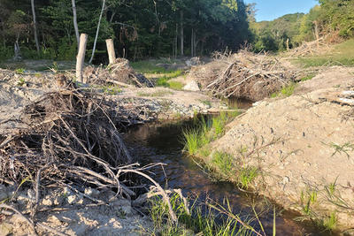 Progress in re-establishing a free-flowing West Beaver Dam Brook