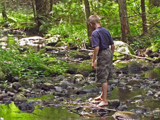 Boy walking in a stream at Wachusett Meadow Wildlife Sanctuary