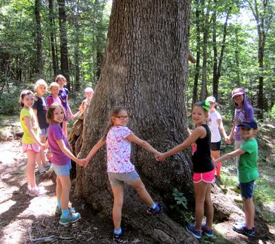 Campers at Wachusett Meadow Wildlife Sanctuary Day Camp