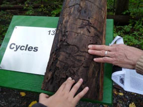 Hands on a Sensory Trail Sign