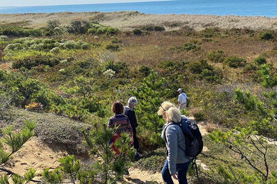 Adults hiking a beach during a Cape Cod Field School course