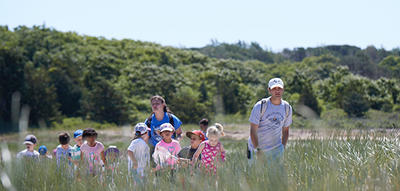 Campers hiking through salt water marsh