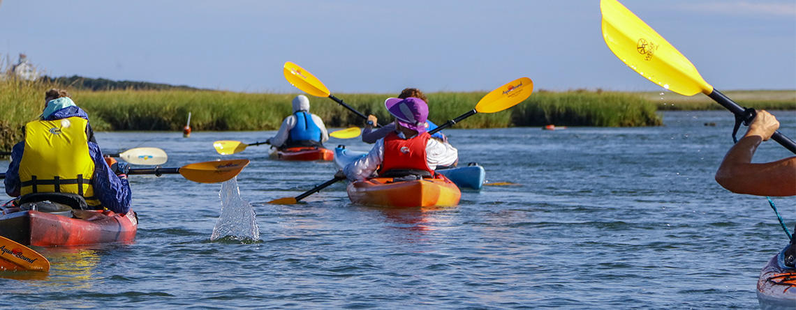 Cape Cod Field School kayaking group