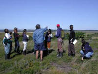 College Program in the salt marsh