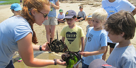 Counselor showing marine creatures to campers