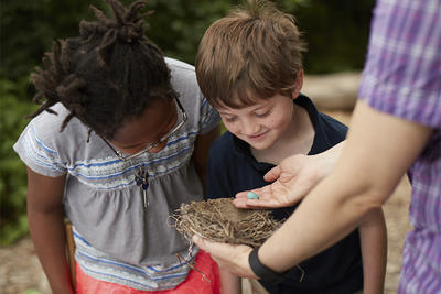 Two kids examining bird nest with naturalist