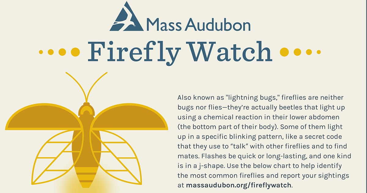 Firefly Watch Citizen Science Project