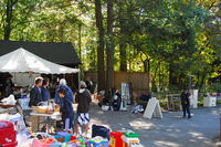 Annual Yard Sale at Blue Hills Trailside Museum © Kent Harnois