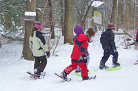 Kids snowshoeing at a Mass Audubon wildlife sanctuary