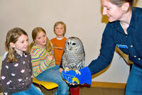 Kids get up-close with a barred owl at Broadmoor Wildlife Sanctuary