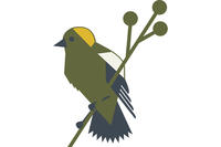 Green icon of a Bobolink
