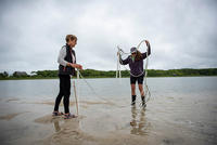 Horseshoe Crab survey volunteers at work © Gabrielle Mannino