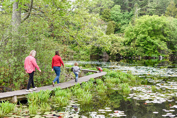 Family on the boardwalk at Ipswich River Wildlife Sanctuary © Charlie Reinertsen