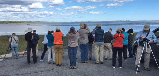 Birders Certificate students at Joppa Flats (Photo: Jen Costa)