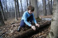 Boy checking under a log in winter woods at Pleasant Valley Wildlife Sanctuary