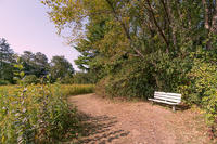 Bench on meadow trail in fall at Canoe Meadows Wildlife Sanctuary