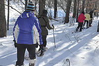 Group snowshoeing at Stony Brook