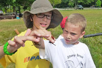 Stony Brook campers holding dragonflies