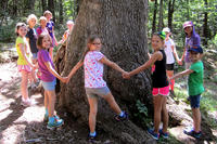 Campers at Wachusett Meadow Nature Day Camp