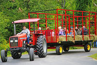 Families enjoying a tractor hayride at Hey Day © Bruce Dean