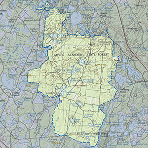 Map of the Myles Standish State Forest IBA site