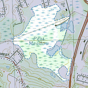 Map of the Peat Meadow IBA site