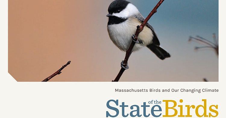 State of the Birds 2017: Citations