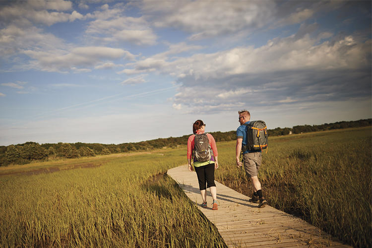 Hiking the boardwalk at Wellfleet Bay