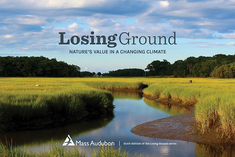 "Cover of ""Losing Ground"" report (image © Julie Archibald)"