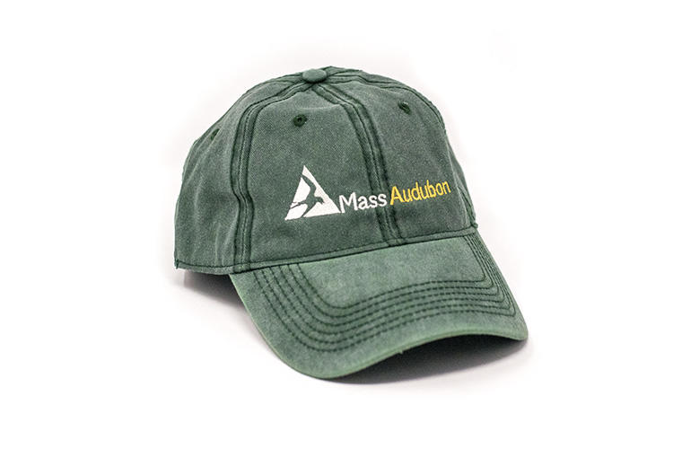 Mass Audubon baseball cap in green