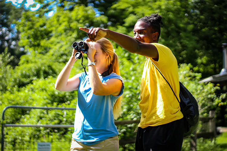 Two people using binoculars at Drumlin Farm Wildlife Sanctuary